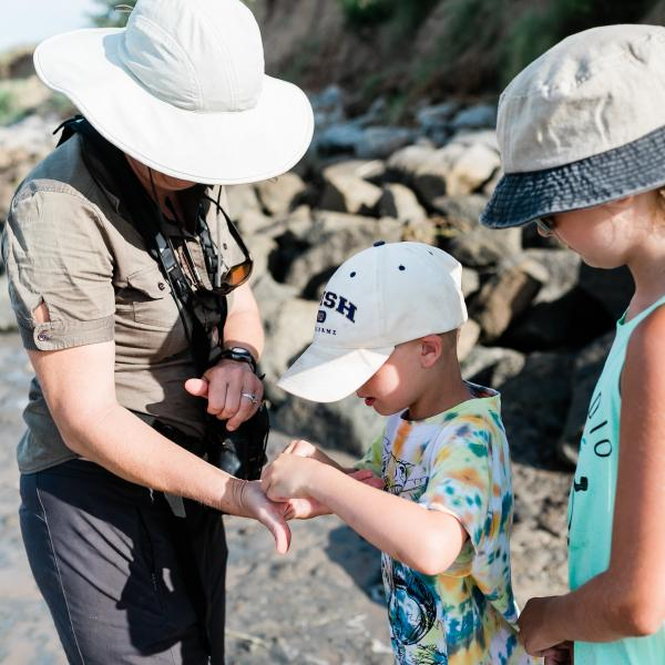 fossil tour tybee island