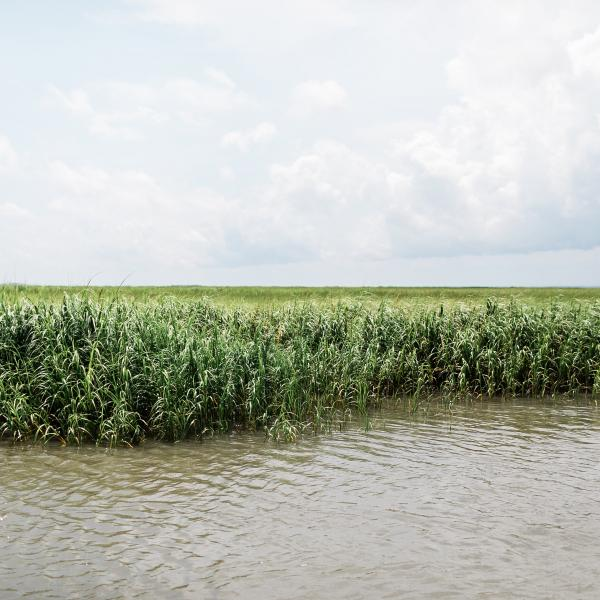 Lazaretto Creek