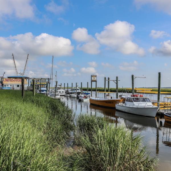 Tybee Island Boats Dock