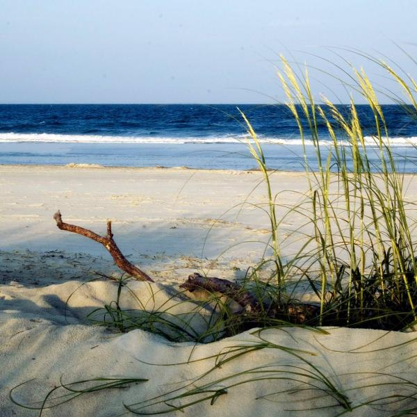 Getting Here | Visit Tybee Island